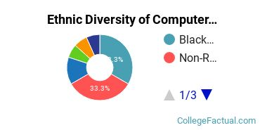 Ethnic Diversity of Computer & Information Sciences Majors at Bowie State University