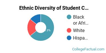 Ethnic Diversity of Student Counseling Majors at Bowie State University