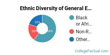 Ethnic Diversity of General English Literature Majors at Bowie State University