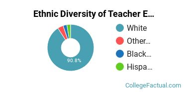 Ethnic Diversity of Teacher Education Subject Specific Majors at Bowling Green State University - Main Campus