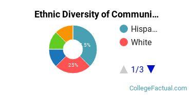 Ethnic Diversity of Communication & Journalism Majors at Brandman University