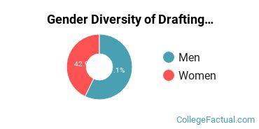 BC Gender Breakdown of Drafting & Design Engineering Technology Associate's Degree Grads