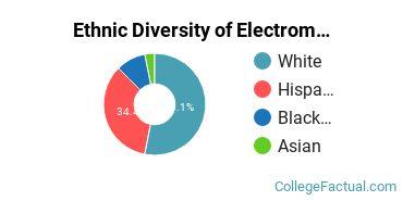 Ethnic Diversity of Electromechanical Engineering Technology Majors at Brazosport College