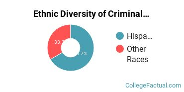 Ethnic Diversity of Criminal Justice & Corrections Majors at Brazosport College