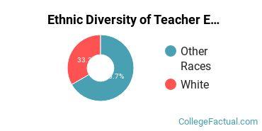 Ethnic Diversity of Teacher Education Subject Specific Majors at Brescia University
