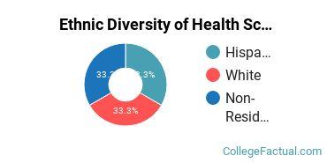 Ethnic Diversity of Health Sciences & Services Majors at Brescia University