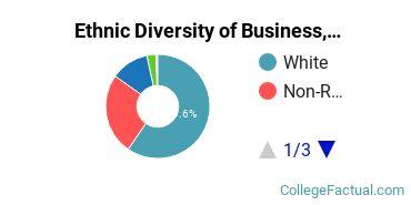 Ethnic Diversity of Business, Management & Marketing Majors at Brigham Young University - Idaho