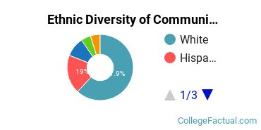 Ethnic Diversity of Communications Technologies & Support Majors at Brookdale Community College