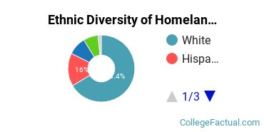 Ethnic Diversity of Homeland Security, Law Enforcement & Firefighting Majors at Brookdale Community College