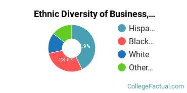 Ethnic Diversity of Business, Management & Marketing Majors at Brookline College - Phoenix