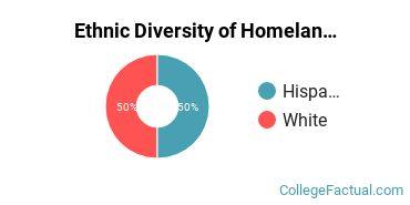 Ethnic Diversity of Homeland Security, Law Enforcement & Firefighting Majors at Brookline College - Phoenix