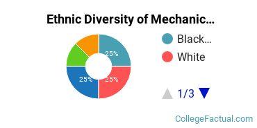 Ethnic Diversity of Mechanic & Repair Technologies Majors at Broward College