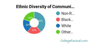 Ethnic Diversity of Communication & Journalism Majors at Brown University