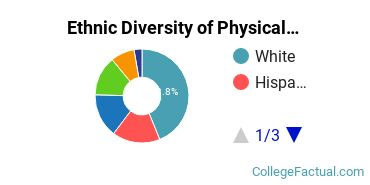 Ethnic Diversity of Physical Sciences Majors at Brown University