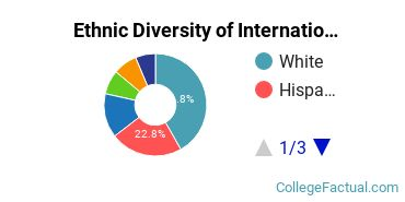 Ethnic Diversity of International Relations & National Security Majors at Brown University