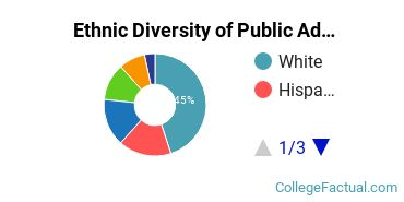 Ethnic Diversity of Public Administration & Social Service Majors at Brown University