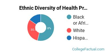 Ethnic Diversity of Health Professions Majors at Bryant & Stratton College - Buffalo