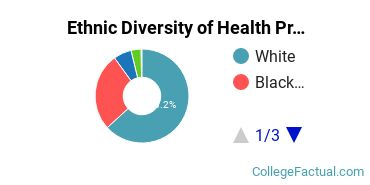 Ethnic Diversity of Health Professions Majors at Bryant & Stratton College - Online