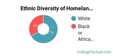 Ethnic Diversity of Homeland Security, Law Enforcement & Firefighting Majors at Bryant & Stratton College - Online