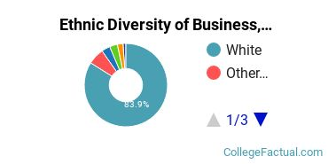 Ethnic Diversity of Business, Management & Marketing Majors at Butler University