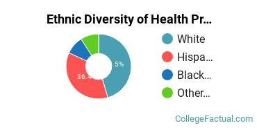 Ethnic Diversity of Health Professions Majors at California College San Diego