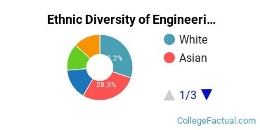 Ethnic Diversity of Engineering Majors at California Institute of Technology