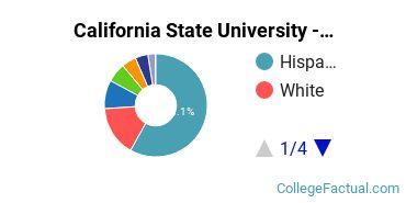 CSUB Undergraduate Racial-Ethnic Diversity Pie Chart