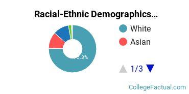 Racial-Ethnic Demographics of CSUB Faculty
