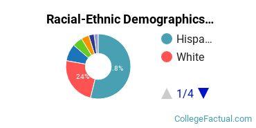 California State University - Bakersfield Graduate Students Racial-Ethnic Diversity Pie Chart