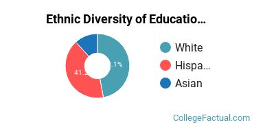 Ethnic Diversity of Education Majors at California State University - Channel Islands