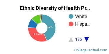 Ethnic Diversity of Health Professions Majors at California State University - Chico