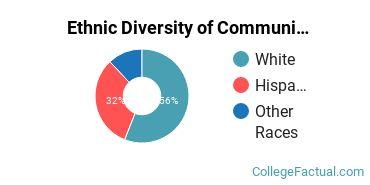 Ethnic Diversity of Communication Sciences Majors at California State University - Chico