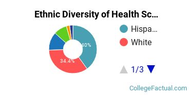 Ethnic Diversity of Health Sciences & Services Majors at California State University - Chico