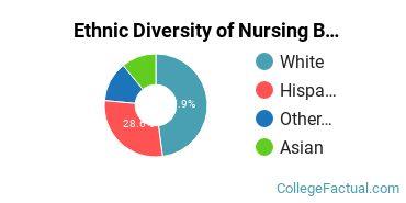 Ethnic Diversity of Nursing Majors at California State University - Chico