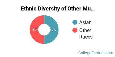 Ethnic Diversity of Other Multi/Interdisciplinary Studies Majors at California State University - Chico