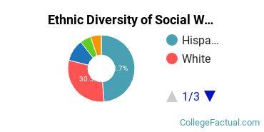 Ethnic Diversity of Social Work Majors at California State University - Chico