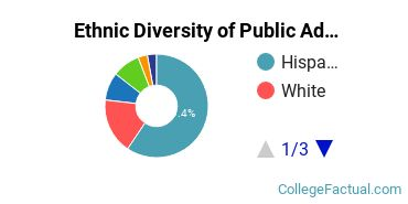 Ethnic Diversity of Public Administration & Social Service Majors at California State University - Fresno