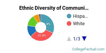 Ethnic Diversity of Communication & Media Studies Majors at California State University - Sacramento