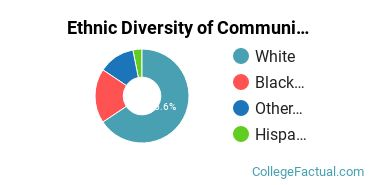 Ethnic Diversity of Communication & Journalism Majors at Capital University