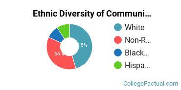 Ethnic Diversity of Communication & Journalism Majors at Cardinal Stritch University