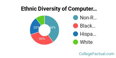 Ethnic Diversity of Computer & Information Sciences Majors at Cardinal Stritch University