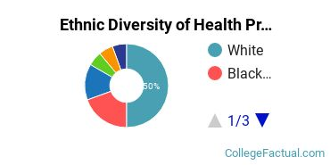 Ethnic Diversity of Health Professions Majors at Cardinal Stritch University