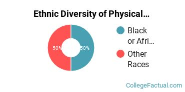 Ethnic Diversity of Physical Sciences Majors at Cardinal Stritch University
