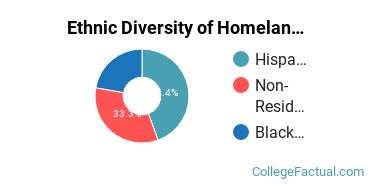 Ethnic Diversity of Homeland Security, Law Enforcement & Firefighting Majors at Cardinal Stritch University