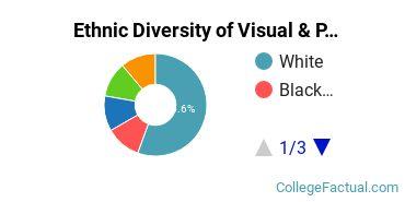 Ethnic Diversity of Visual & Performing Arts Majors at Cardinal Stritch University