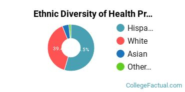 Ethnic Diversity of Health Professions Majors at Career College of Northern Nevada