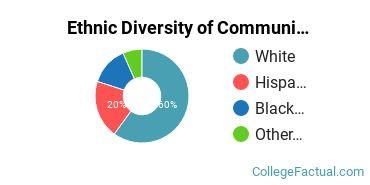 Ethnic Diversity of Communication & Journalism Majors at Catawba College
