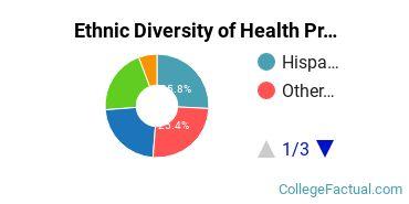 Ethnic Diversity of Health Professions Majors at CBD College
