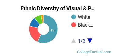Ethnic Diversity of Visual & Performing Arts Majors at Centenary University