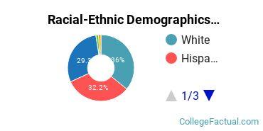 Center for Advanced Legal Studies Undergraduate Racial-Ethnic Diversity Pie Chart